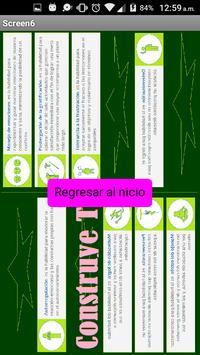 17CT62- ConstruyeTeeee!! lml apk screenshot