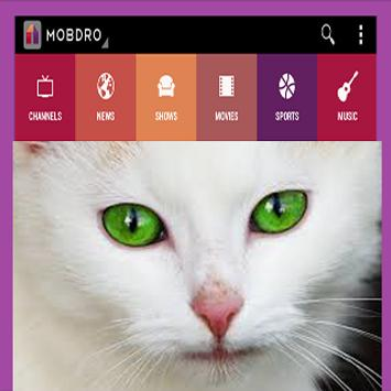 guide for mobdro pro apk screenshot