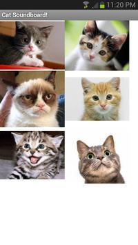 Cat and Kitten SoundBoard screenshot 1