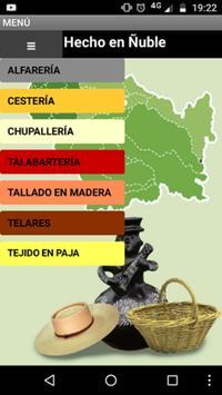 Hecho en Ñuble poster