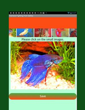 Siamese Fighting Fish Guide screenshot 2
