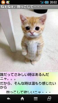 癒しのニャンコ apk screenshot