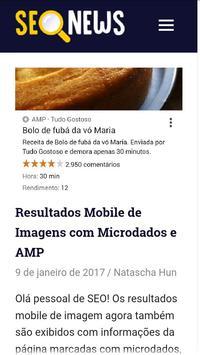 SEO News Brasil screenshot 5