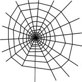 SpiderSquash icon
