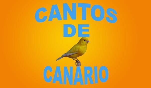 Cantos de Canário screenshot 2