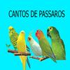 Canto dos pássaros V1 أيقونة