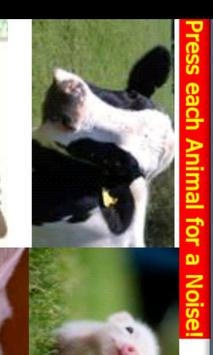 Animal House! apk screenshot