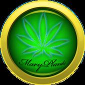 Mary Plants icon