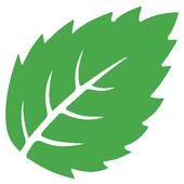 Essentia Decor icon
