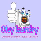 OLVY Laundry icon