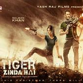 Tiger Zinda Hai Full Movie Online icon