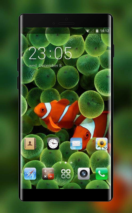 Theme For Original Iphone Clownfish Wallpaper Hd For Android