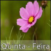 Quinta - Feira icon