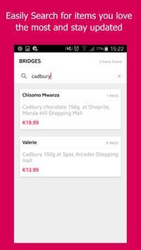 Bridges screenshot 1