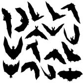 Bats Sound icon