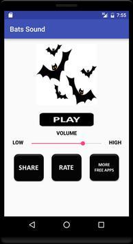 Bats Sound poster
