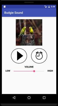 Budgie Sound screenshot 2
