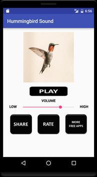 Hummingbird Sound poster