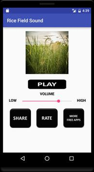 Rice Field Sound poster