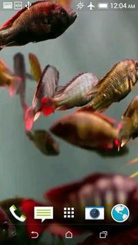 Aquarium 3D screenshot 9