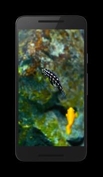 Aquarium 3D poster