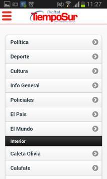 Diario TiempoSur Digital poster