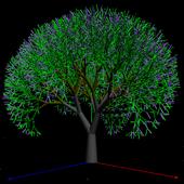 Trees 3D icon