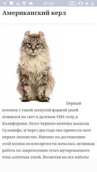 Все породы кошек screenshot 3