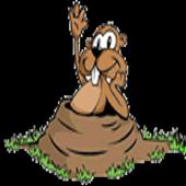 Gopherhole icon