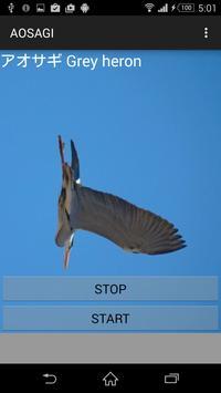 Heron cries poster