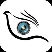 FlyWithEye icon