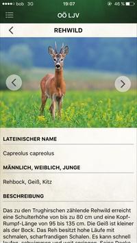 OÖ LJV (Jagd) apk screenshot