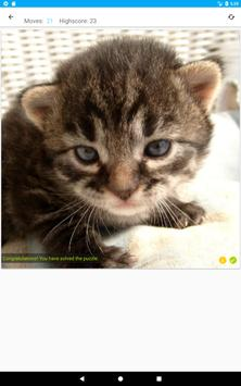 Cat and Kitten Puzzle apk screenshot