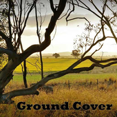 Ground Cover icon