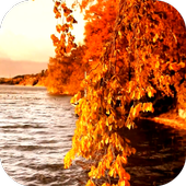 Autumn 3D Video LWP icon