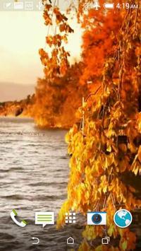 Autumn 3D Video LWP apk screenshot