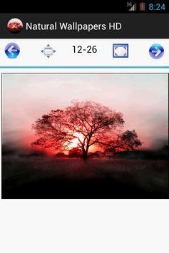 HD Natural Wallpapers Top 26 apk screenshot