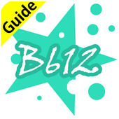 Guide For B612 Selfie Heart icon