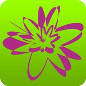 Bab Star App icon