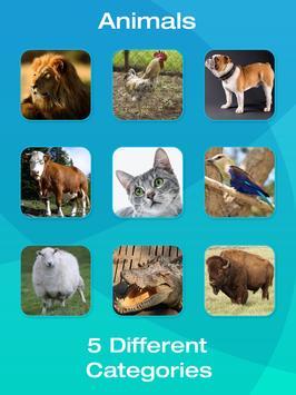 Animals screenshot 13