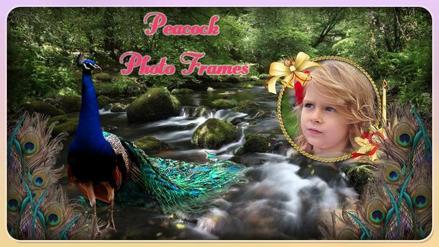 Peacock Photo Frame poster