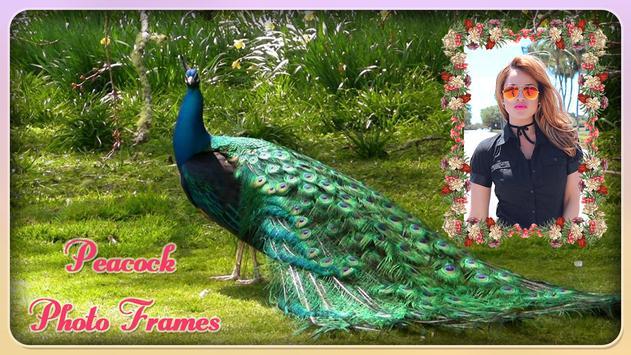 Peacock Photo Frame screenshot 1