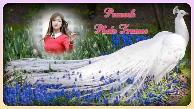 Peacock Photo Frame screenshot 2