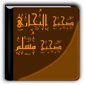 صحيح البخاري ومسلم icon