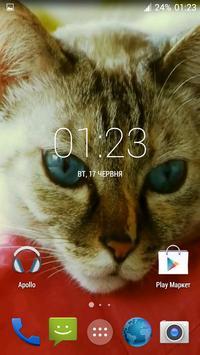 Beautiful Cat Video Wallpaper poster