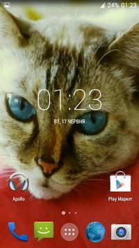 Beautiful Cat Video Wallpaper apk screenshot