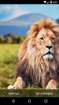 Lion Live Wallpaper HD apk screenshot