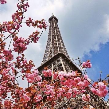 Paris puzzle screenshot 4