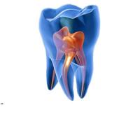 Зуботехническая Лаборатория icon