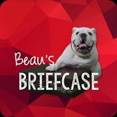 Beau's Briefcase icon